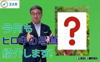 【週刊ヒロキ通信】今月の一枚⑬_税理士 髙野裕